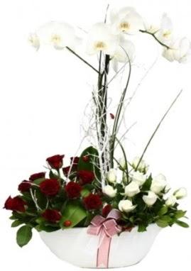 Tek dal beyaz orkide 8 beyaz 8 kırmızı gül  Ankara çiçek , çiçekçi , çiçekçilik