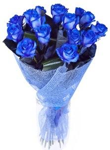 12 adet mavi gül buketi  Ankara internetten çiçek siparişi