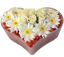 Kalp içerisinde 7 beyaz gül ve papatyalar  Ankara hediye sevgilime hediye çiçek