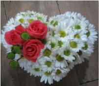 3 adet kırmızı gül mika kalptte papatyalar  Ankara hediye sevgilime hediye çiçek