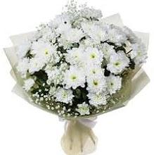 Papatya Buketi  Ankara online çiçek gönderme sipariş
