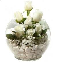 11 adet beyaz gül cam fanus çiçeği  Ankara çiçek siparişi vermek