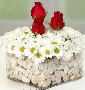 Mika kalpte papatyalar ve 3 gül  Ankaraya çiçek yolla