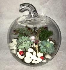 Küçük terrarium elma 3 kaktüs  Ankara çiçek siparişi vermek