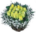 Ankara hediye sevgilime hediye çiçek  Sari harika bir gül sepeti