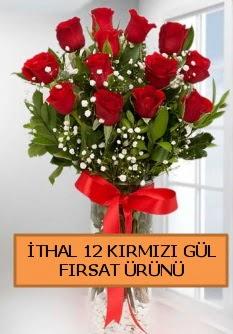 İthal kırmızı 12 adet kaliteli gül  Ankara çiçek satışı