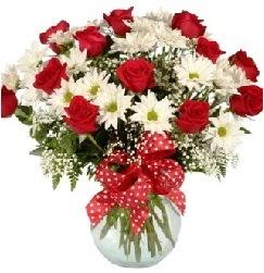 12 adet kırmızı gül papatya vazosu süper  Ankaraya çiçek yolla