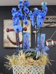 4 dallı özel mavi orkide  Ankara çiçek mağazası , çiçekçi adresleri