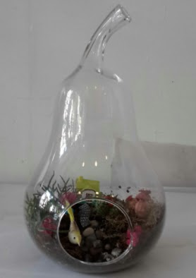 Armut orta boy cam terrarium tanzim  Ankaraya çiçek yolla