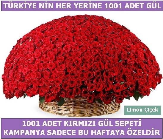1001 Adet kırmızı gül Bu haftaya özel  Ankarada çiçek gönderme sitemiz güvenlidir