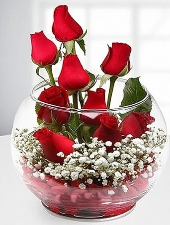 Kırmızı Mutluluk fanusta 9 kırmızı gül  Ankara anneler günü çiçek yolla
