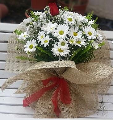 Papatya 1 adet kırmızı gül buketi  Ankara çiçek online çiçek siparişi