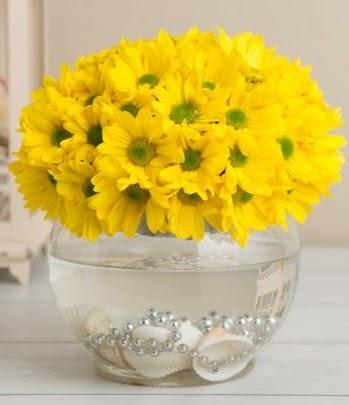 Fanusta Sarı Papatya  Ankara anneler günü çiçek yolla