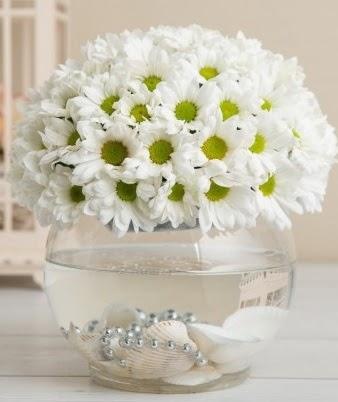 Fanusta beyaz Papatya  Ankara çiçek , çiçekçi , çiçekçilik