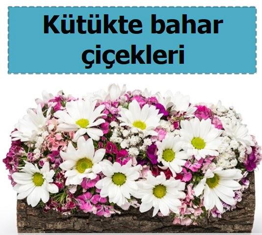 Kütük içerisinde kır çiçekleri  Ankara ucuz çiçek gönder