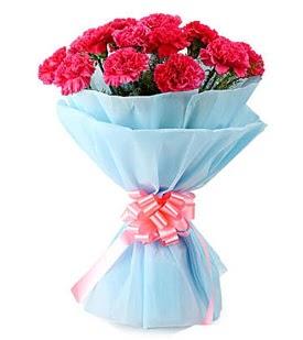 19 adet kırmızı karanfil buketi  Ankara çiçek siparişi sitesi
