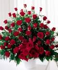 Ankara ucuz çiçek gönder  51 Adet  Gül Sadece sen...