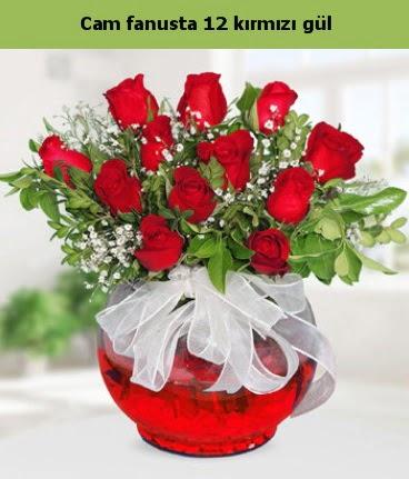 Cam içerisinde 12 adet kırmızı gül  Ankara hediye sevgilime hediye çiçek