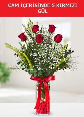 Cam içerisinde 5 adet kırmızı gül  Ankara anneler günü çiçek yolla
