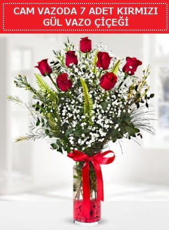 Cam vazoda 7 adet kırmızı gül çiçeği  Ankara İnternetten çiçek siparişi