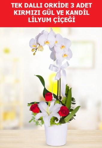 Tek dallı orkide 3 gül ve kandil lilyum  Ankara çiçek gönderme