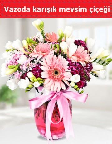 Vazoda karışık mevsim çiçeği  Ankara ucuz çiçek gönder