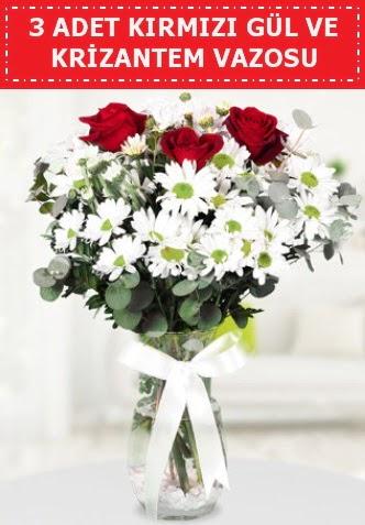 3 kırmızı gül ve camda krizantem çiçekleri  Ankara çiçekçi telefonları