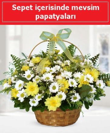 Sepet içerisinde mevsim papatyaları  Ankara çiçek satışı