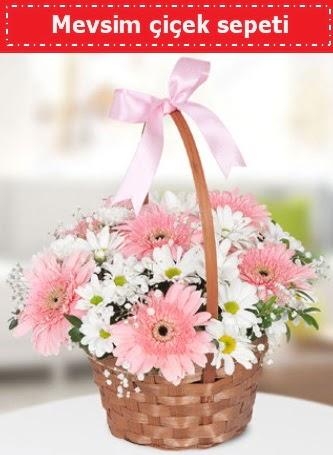 Mevsim kır çiçek sepeti  Ankara ucuz çiçek gönder