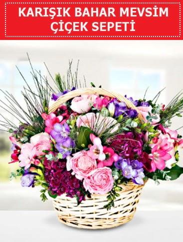 Karışık mevsim bahar çiçekleri  Ankara çiçek satışı