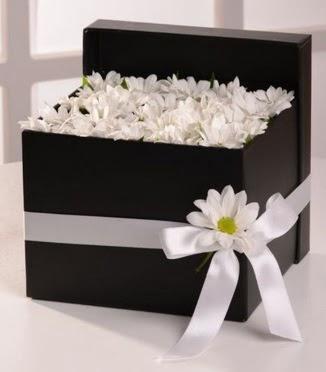 Kutuda beyaz krizantem papatya çiçekleri  Ankara anneler günü çiçek yolla