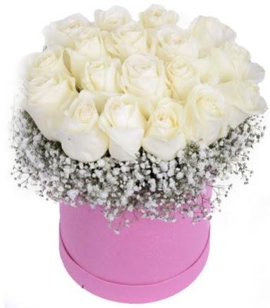Renkli kutuda 19 adet beyaz gül  Ankara hediye sevgilime hediye çiçek