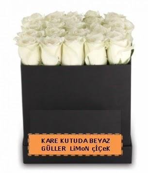 Kare kutuda 17 adet beyaz gül tanzimi  Ankara anneler günü çiçek yolla