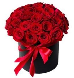 25 adet kırmızı gül kız isteme çiçeği  Ankara hediye sevgilime hediye çiçek