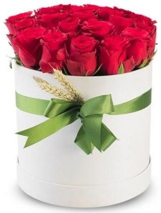 25 adet özel kutuda kırmızı gül  Ankara yurtiçi ve yurtdışı çiçek siparişi  söz çiçekler