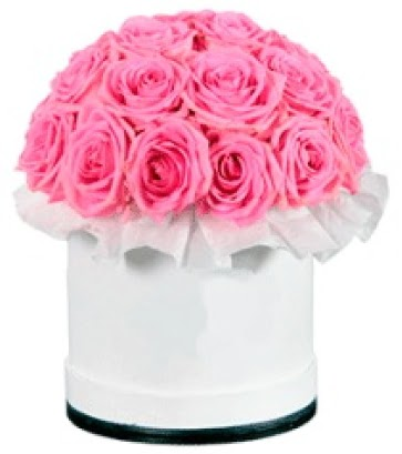 özel kutuda 20 adet pembe gül  Ankara İnternetten çiçek siparişi