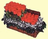 Ankaraya çiçek yolla  Sandikta 13 adet güller