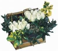 Ankara çiçek online çiçek siparişi  13 adet sandikta beyaz gül