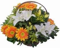Ankara uluslararası çiçek gönderme  sepet modeli Gerbera kazablanka sepet