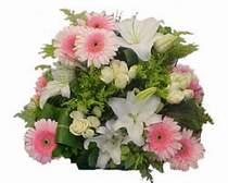 Ankara online çiçek gönderme sipariş  Gül kazablanka gerbera sepet çiçek modeli