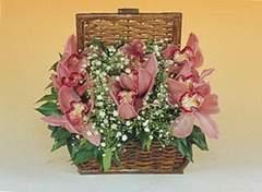 Ankara yurtiçi ve yurtdışı çiçek siparişi  Sepet içerisinde orkide