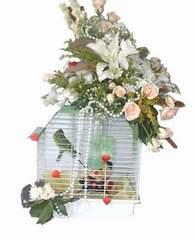 Ankara online çiçekçi , çiçek siparişi  Muhabbet kusu ve çiçekler